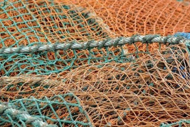 в рыболовных сетях фото