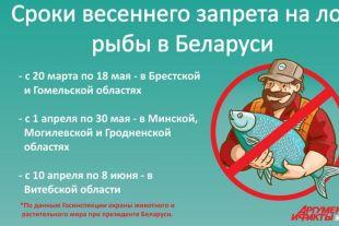 до какого числа запрет на ловлю рыбы в белоруссии