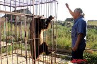 Павел Кудря и его медведь.