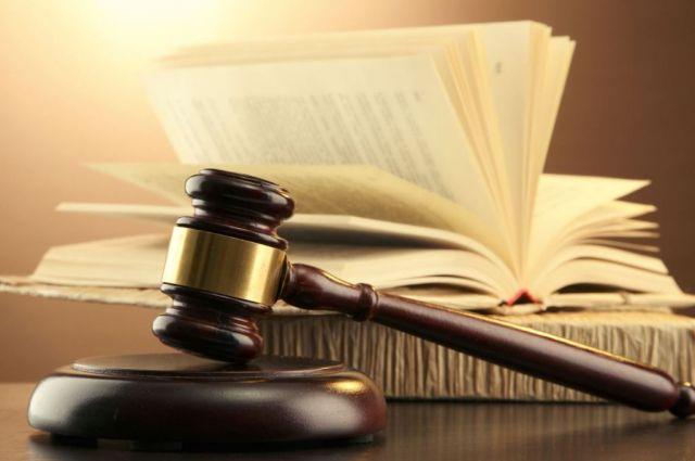 Заубийство щенка минчанин получил полтора года тюрьмы