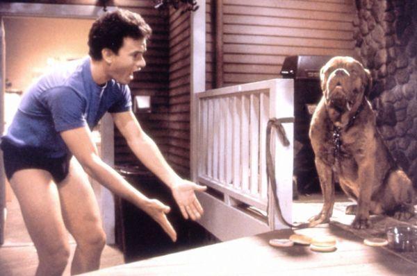 Немалый успех выпал и на долю детективной комедии «Тёрнер и Хуч» (1989), где его партнёром выступил пёс.