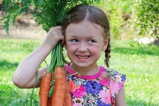 А это лучшая помощница мамы и бабушки - Майя из Минска. Вот какой урожай моркови девчушка помогла собрать своим родным на огороде!
