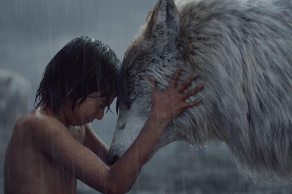 Одним из главных достижений в области визуальных эффектов в 2016 году стала «Книга джунглей»: более 90% фильма было создано специалистами по компьютерной графики из студии Legacy Effects.