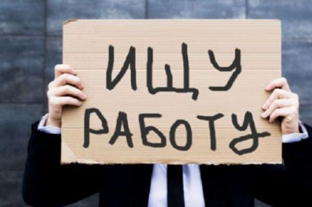 Количество нигде неработающих вРеспублике Беларусь снизилось на17% — Минтруда