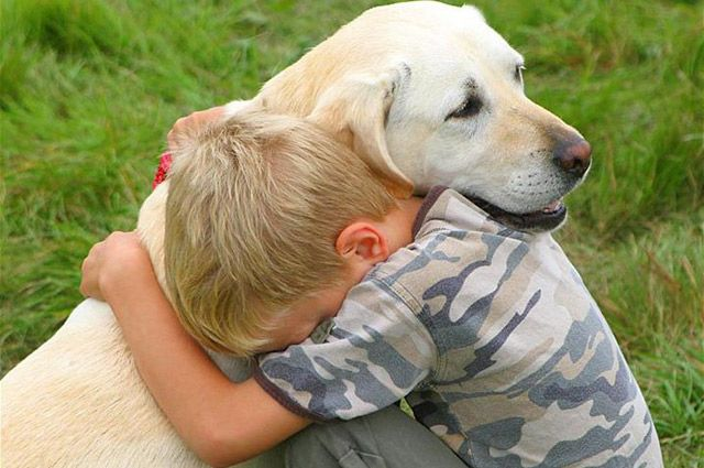 Домашние животные - отличные товарищи. Но дружить надо с людьми.