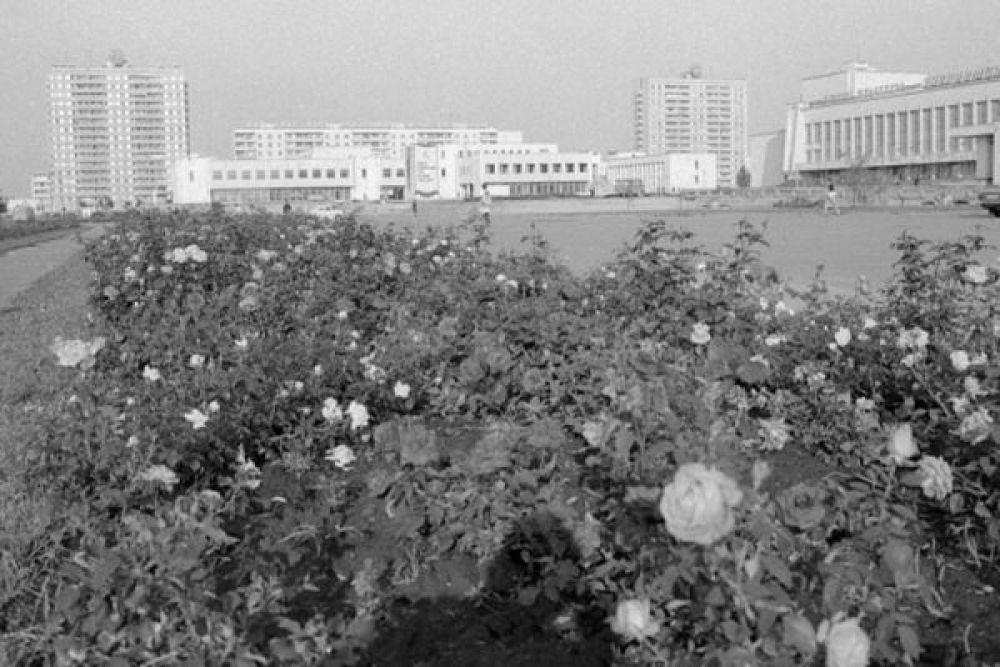 Один из микрорайонов города Припять.