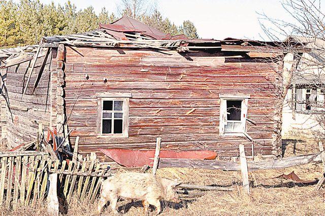 Заброшенная деревня Тульговичи в 30-километровой зоне отчуждения, в 370 км к юго-востоку от Минска.