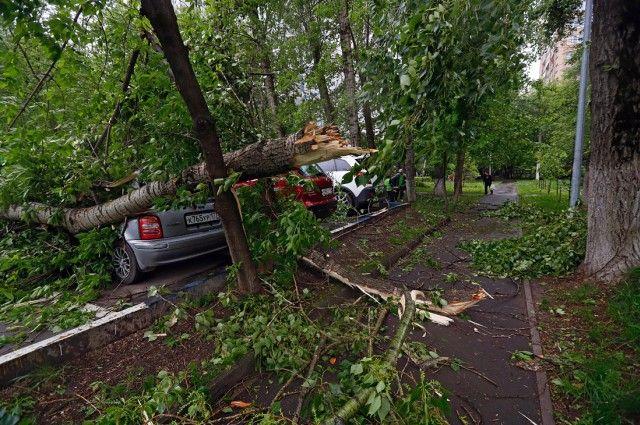 Из-за урагана в столице России погибли минимум 6 человек