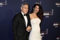 Супруги Джордж и Амаль Клуни.