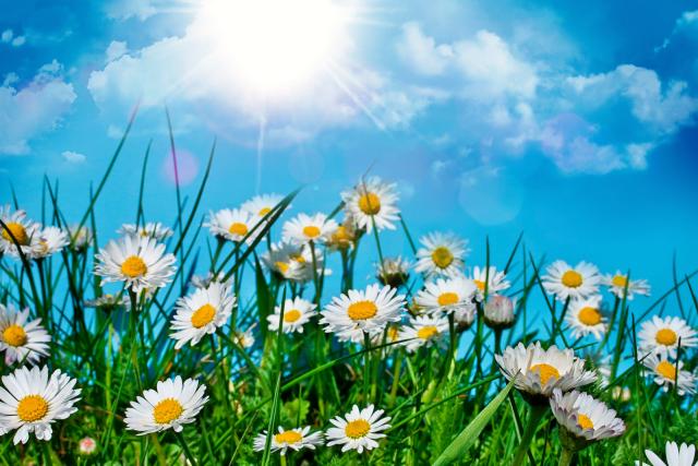 Погода навыходные вКраснодаре икрае: снова пасмурно ижарко