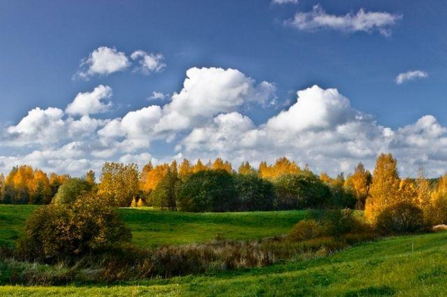 Бабье лето придет вБеларусь ввыходные