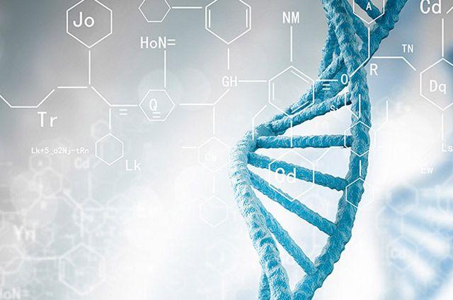 Генетические паспорта получили уже более 16 тыс. белорусов.
