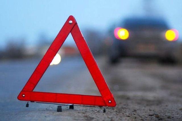 ВОршанском районе машина сбила пешехода. шофёр убежал сместа ДТП