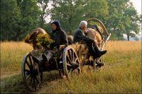 Те, кто поднимал сельское хозяйство в СССР, постарели, а новых хозяев мало.