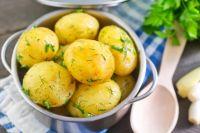Улучшает кровообращение и помогает не замерзнуть картофель, содержащий калий.