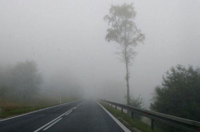 До 3 градусов тепла и туман прогнозируются в Беларуси 20 января