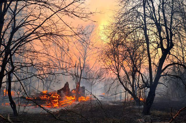 Пожары в зоне отчуждения вокруг Чернобыля.