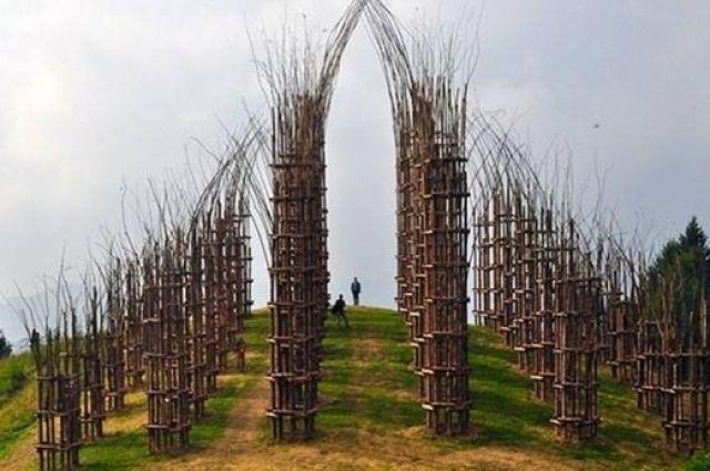 Лет через пятьдесят «природный храм» сравняется размерами с храмами каменными, сводчатые потолки когда-то сомкнутся в небе.
