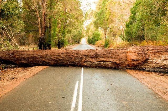 За блокировку дорог в Беларуси будут наказывать более строго.