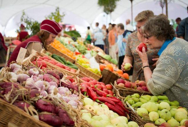 Картофель, свеклу, морковь, капусту и другие овощи, а также фрукты, вырастить без азотных удобрений практически невозможно. Все дело в том, сколько этих веществ внести в землю.
