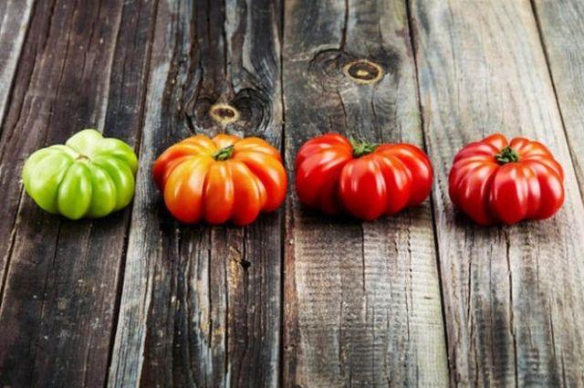 Дозаривать (так называется процесс доведения недозрелых помидоров до их зрелого состояния вне растения) овощи оптимально в освободившемся парнике или сухом помещении.